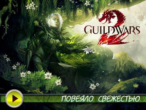 Guild Wars 2. Видеопревью