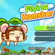 Обложка Flying Hamster