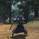 Скриншот Final Fantasy 14: A Realm Reborn – Изображение 207