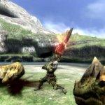 Скриншот Monster Hunter Tri – Изображение 34