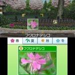 Скриншот Hana to Ikimo no Rittai Zukan – Изображение 9