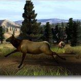 Скриншот Big Buck Hunter