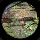 Скриншот Cabela's Big Game Hunter 2012