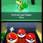 Скриншот Pokémon Black Version/White Version – Изображение 4