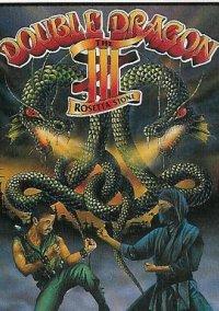 Обложка Double Dragon III: The Sacred Stones