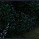 Скриншот Fable Legends – Изображение 27