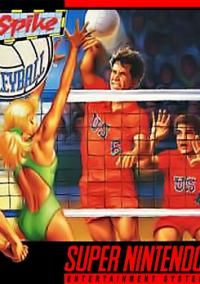 Dig & Spike Volleyball – фото обложки игры
