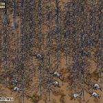 Скриншот SimPark – Изображение 4