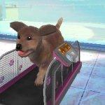 Скриншот Paws & Claws Pampered Pets Resort 3D – Изображение 1