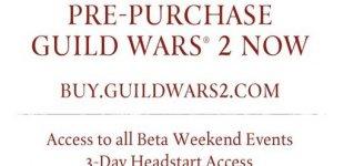 Guild Wars 2. Видео #24