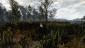Ведьма PS4  - Изображение 43