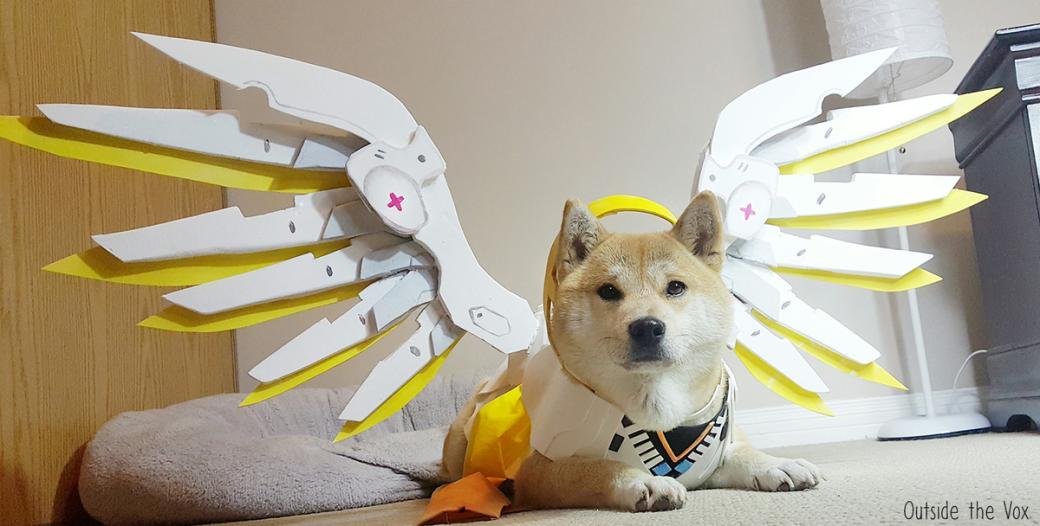 Сногсшибательный собакосплей Overwatch  - Изображение 3
