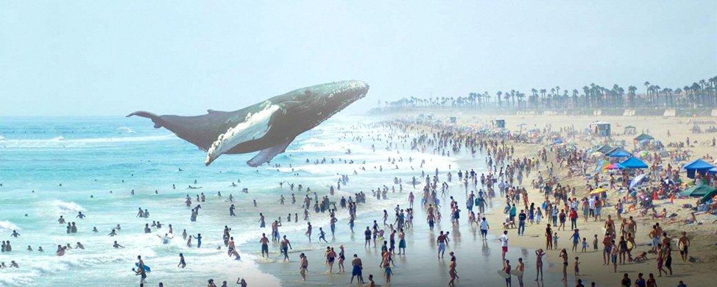 Magic Leap — еще одни очки дополненной реальности от Google - Изображение 10
