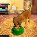 Скриншот My Best Friends. Cats & Dogs – Изображение 2