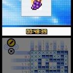 Скриншот Picross DS – Изображение 11