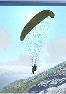 Micro-Flight