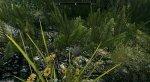 Как TES 5: Skyrim выглядит иработает наNintendo Switch? Отвечаем скриншотами игифками. - Изображение 7