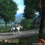 Скриншот The Elder Scrolls IV: Oblivion – Изображение 17