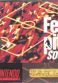 Fever Pitch Soccer – фото обложки игры