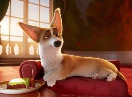 «Гурвинека» вернут в кинотеатры, а «Королевский корги» обзавелся новой датой премьеры