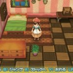 Скриншот Harvest Moon: Connect to a New Land – Изображение 2