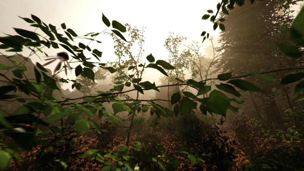 The Forest — записки из мертвого леса. - Изображение 1